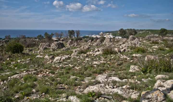 Sunday trekking in Apulia: from Torre dell'Alto Lido to St. Mauro Abbey